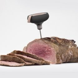 EVOLUTION_HOT STUFF_Braten mit Thermometer